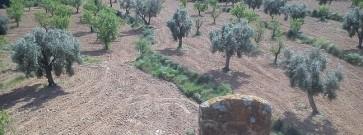 Bajo Aragón desconocido y oculto: Una extraña lápida.